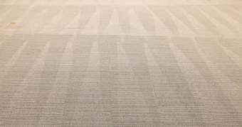 Nettoyage moquette